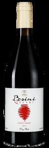 Вино Besini Qvevri Saperavi, 2017 г.