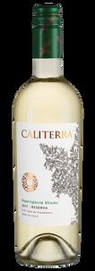 Вино Sauvignon Blanc Reserva, Caliterra, 2017 г.
