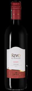 Вино Rivo al Poggio Rosso, Castello Banfi, 2013 г.