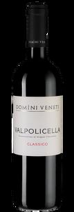 Вино Valpolicella Classico, Domini Veneti, 2018 г.