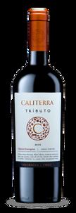 Вино Cabernet Sauvignon Tributo, Vina Caliterra, 2011 г.