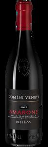 Вино Amarone della Valpolicella Classico, Domini Veneti, 2015 г.